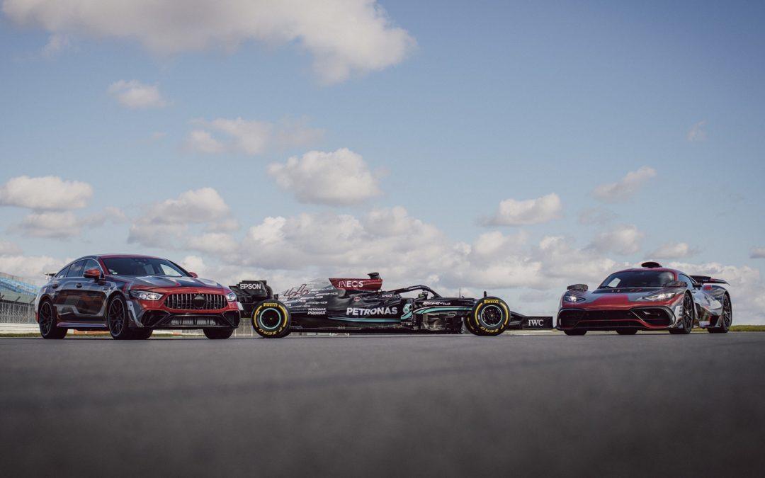 Mercedes-AMG e il team Mercedes-AMG Petronas F1